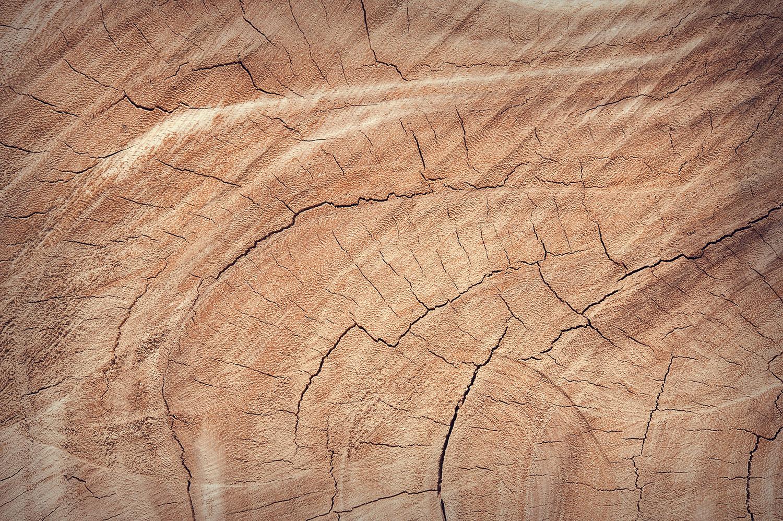 wood-closeup.jpg