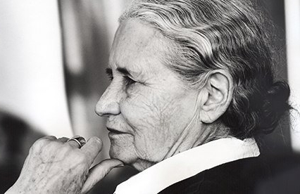 But really,  who is Doris Lessing??