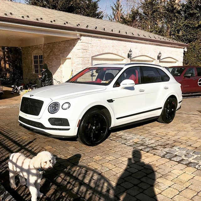 Bentley the Dog (and his car)...