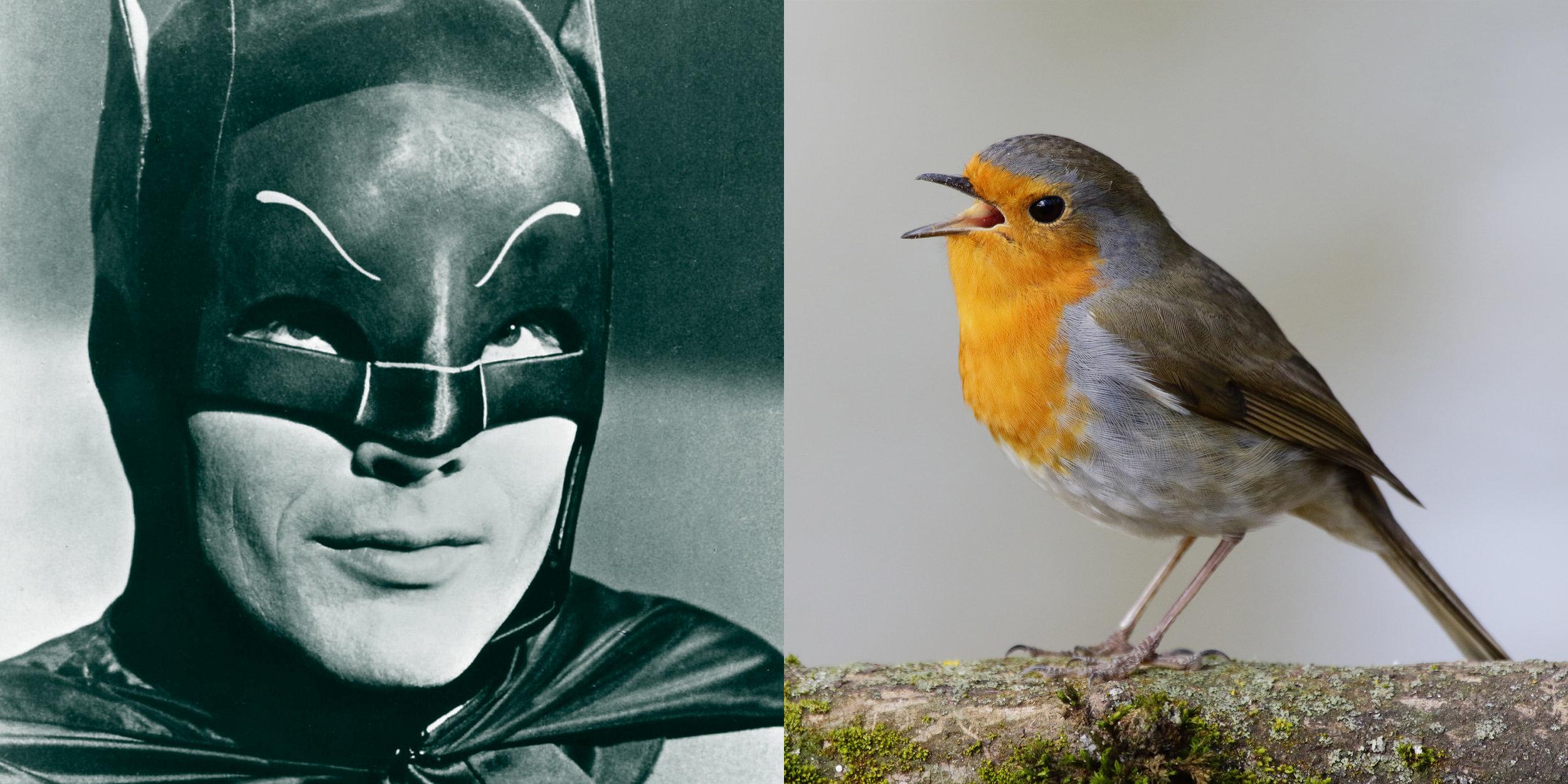 Batman and Robin 2 (1).jpg