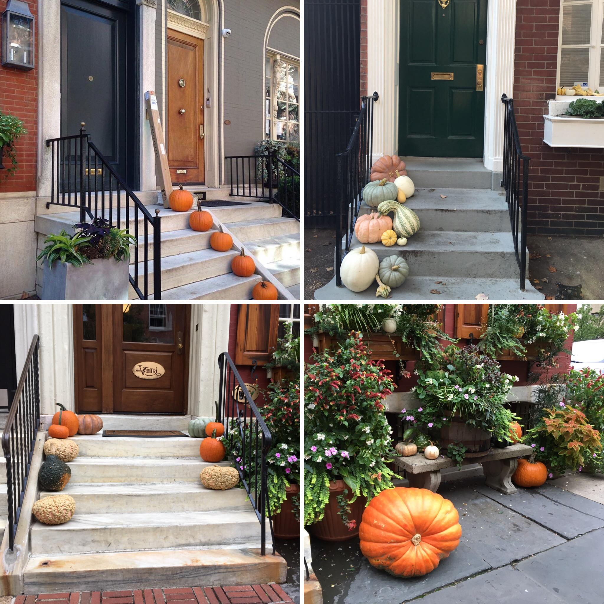 Pumpkins abound about town