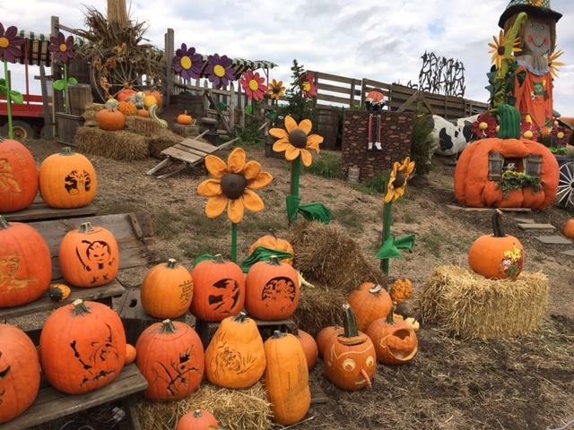 Impressive seasonal display