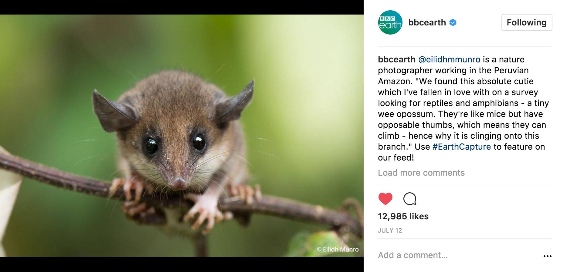 bbc-earth-eilidh-munro