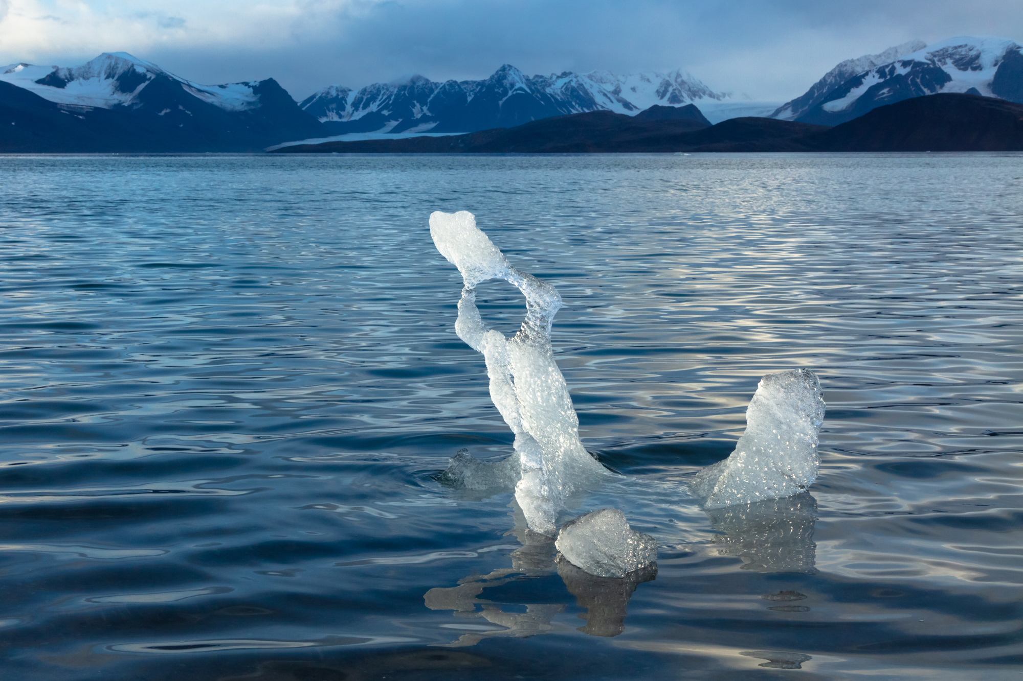 "A piece of glacial ice slowly melts, carved into sculptural form by the shimmering arctic sun.  When the sea ice retreats north in the summer, glacial ice is all that remains in the waters around the archipelago of Svalbard - but even this ice may soon disappear. Icebergs are formed when glaciers push down mountainsides and ""calve"" large chunks of ice into the sea, but this process only occurs when glaciers are large and healthy enough to reach sea-level. It is normal for glaciers to retreat through the summer, but the retreat would ordinarily be met with an advance during the long arctic winter. As climate change takes hold, however, the summer retreat out-scales the winter advance, resulting in glaciers that are rapidly melting and disappearing into the distant mountains."