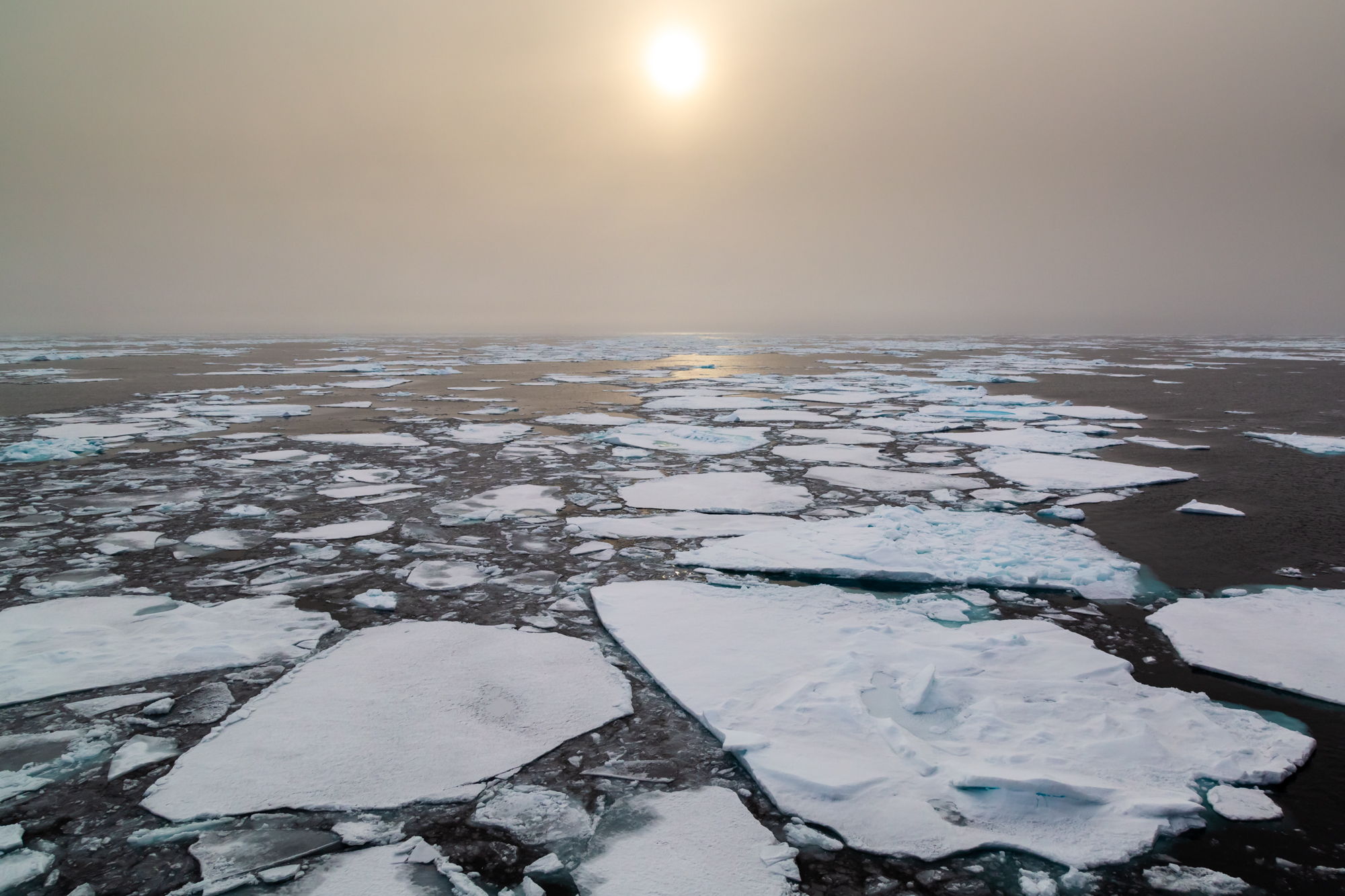 "When many imagine sea ice, people think of a towering mass of ancient and thick ice - like a giant glacier floating on the ocean. In reality, however, much of the sea ice is a fragile mix of these thin ""islands"" that merge or break as they float on the surface of the Arctic Ocean. As the Arctic warms, an increasingly small portion of the ice lasts longer than a single year. The summer breakup and melt now clears most the ice formed the previous winter - and more. Sea ice is dynamic, making it especially fragile in the face of climate change. Like a dance, the ice is constantly in motion as the tides shift, winds blow and the hot sun shines 24 hours a day. The summer area of sea ice is 40% less than it was just 30 years ago and is heading towards a complete summer disappearance in as little as 20-30 years - but it is not yet too late to save the sea ice. I make pictures and share stories not to serve as a memory of what we could soon lose, but rather to give you all a reason to care about fragile natural worlds that could disappear if too many of us fall into the trap of complacency. If enough people care, I believe anything is possible."