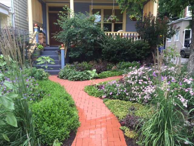 Example of an existing garden in Shadyside that we maintain with spring cleanups, mulching, weeding, dividing, composting, fall cleanup, and leaf removal.