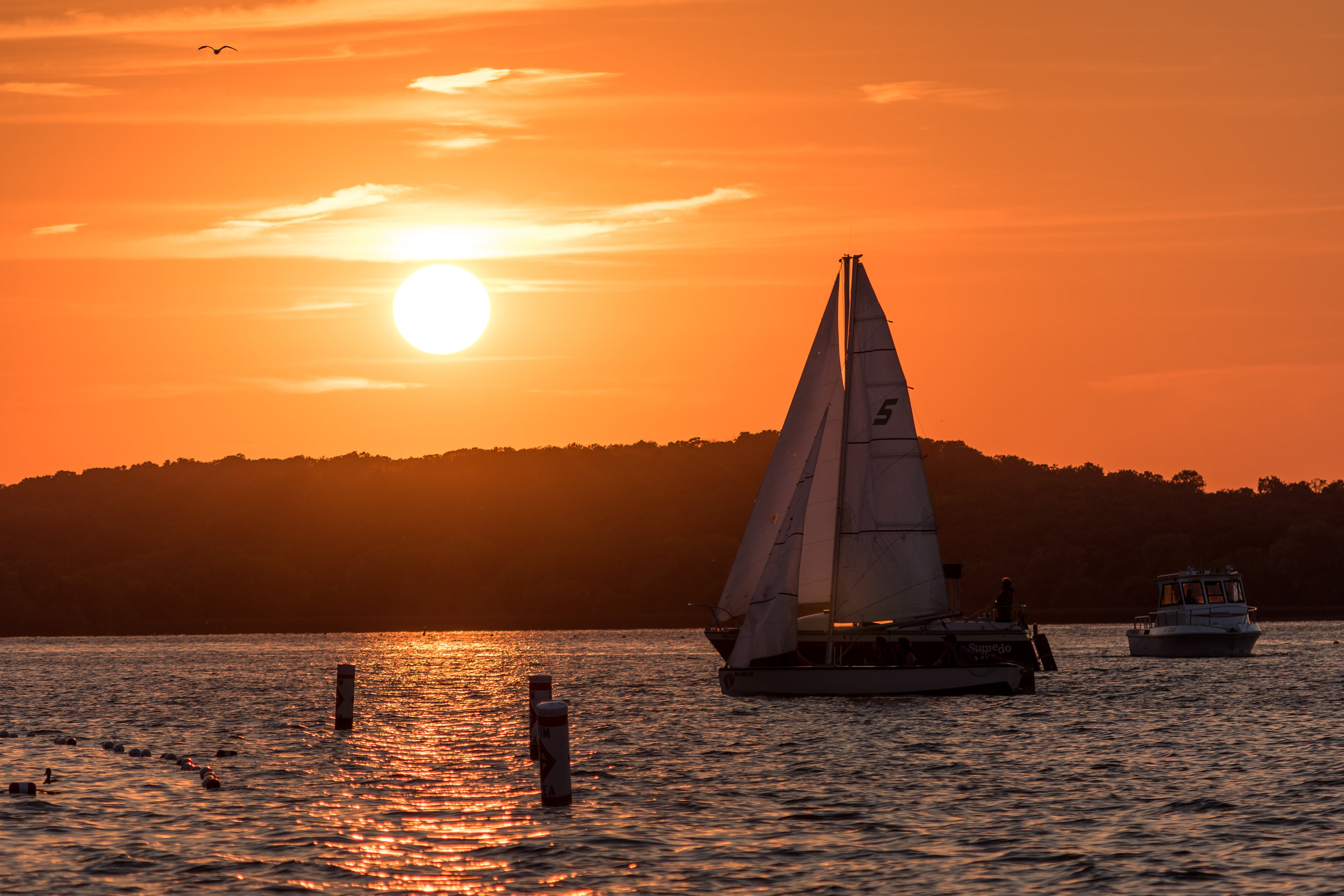 Sail_Boat_Sunset.jpg