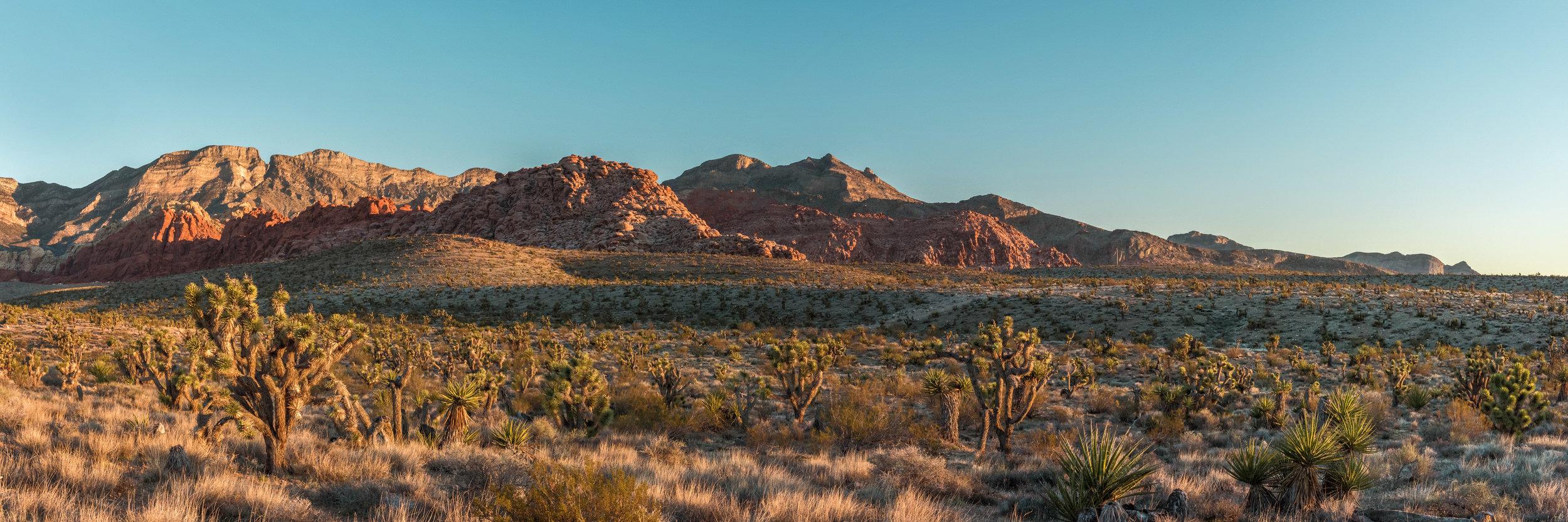 Red-Rock-Canyon-1-Edited-(web).jpg