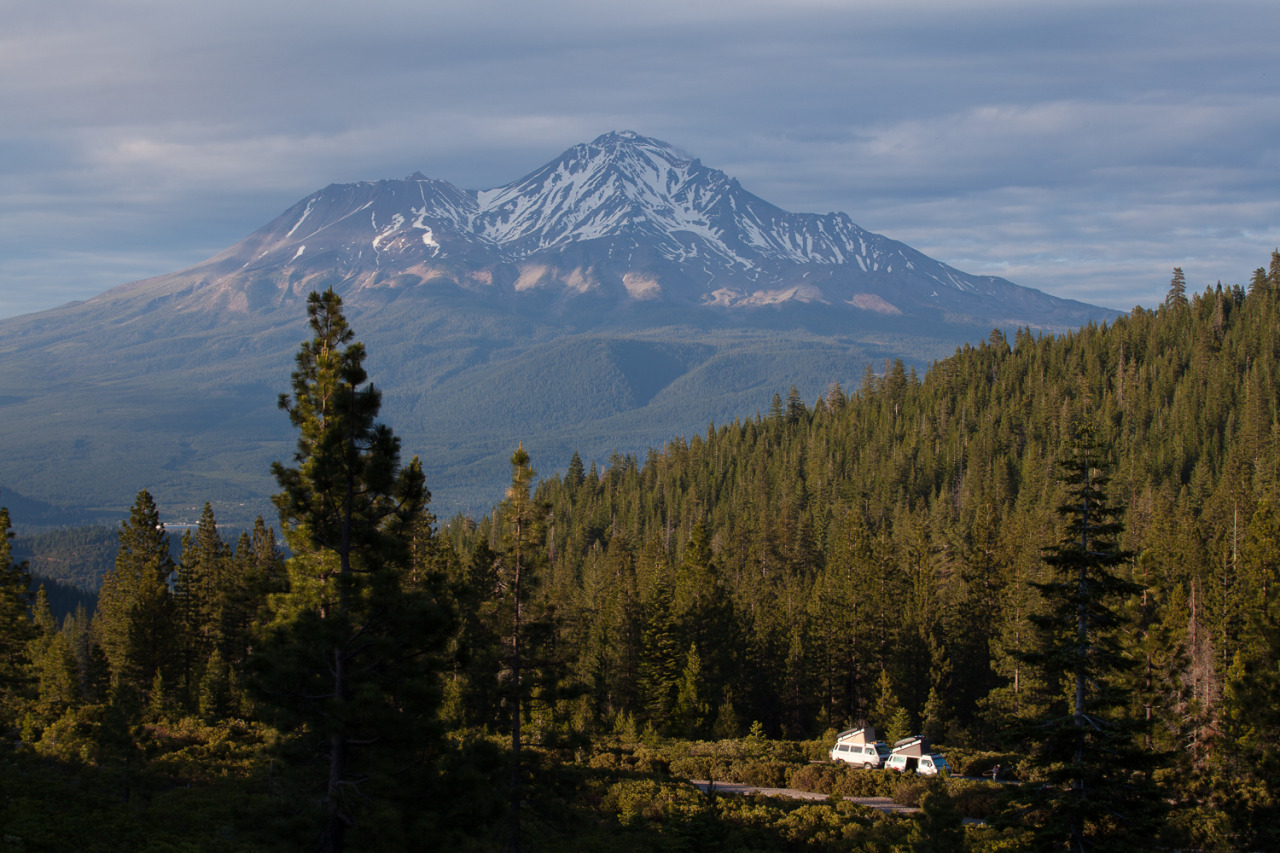 Volkswagen Vanagons camped outside of Mount Shasta, California