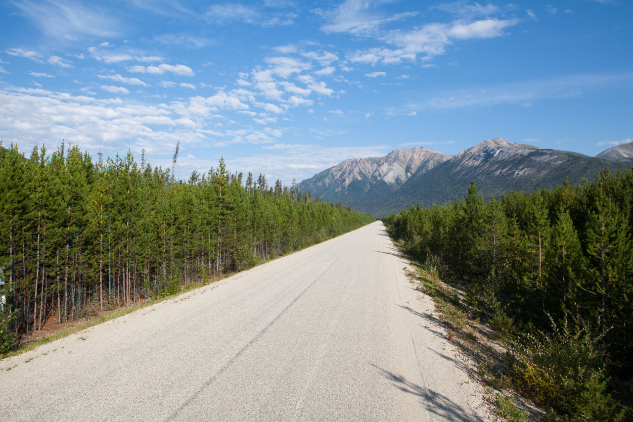 A stretch of the Alaska Highway