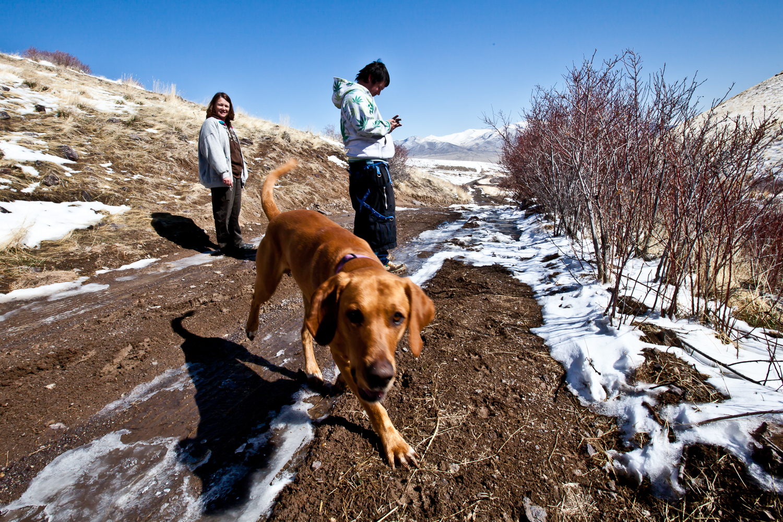 Carla, Luis, Jake on a walk in Imlay, Nevada