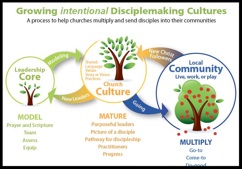Navigator Church Ministries, GiDC Process