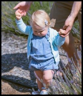 toddlerwalking.jpg