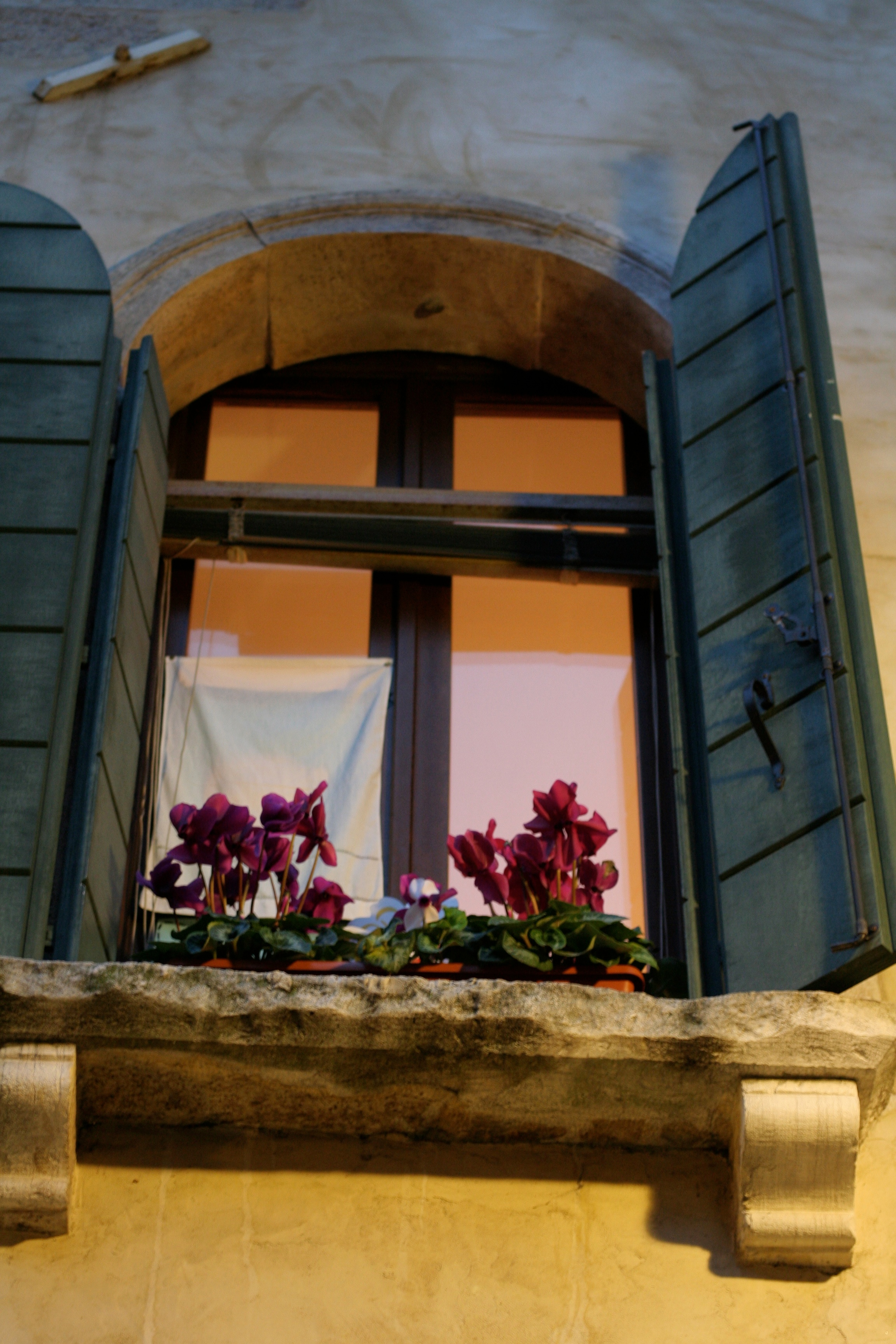 window detail, florence, italy