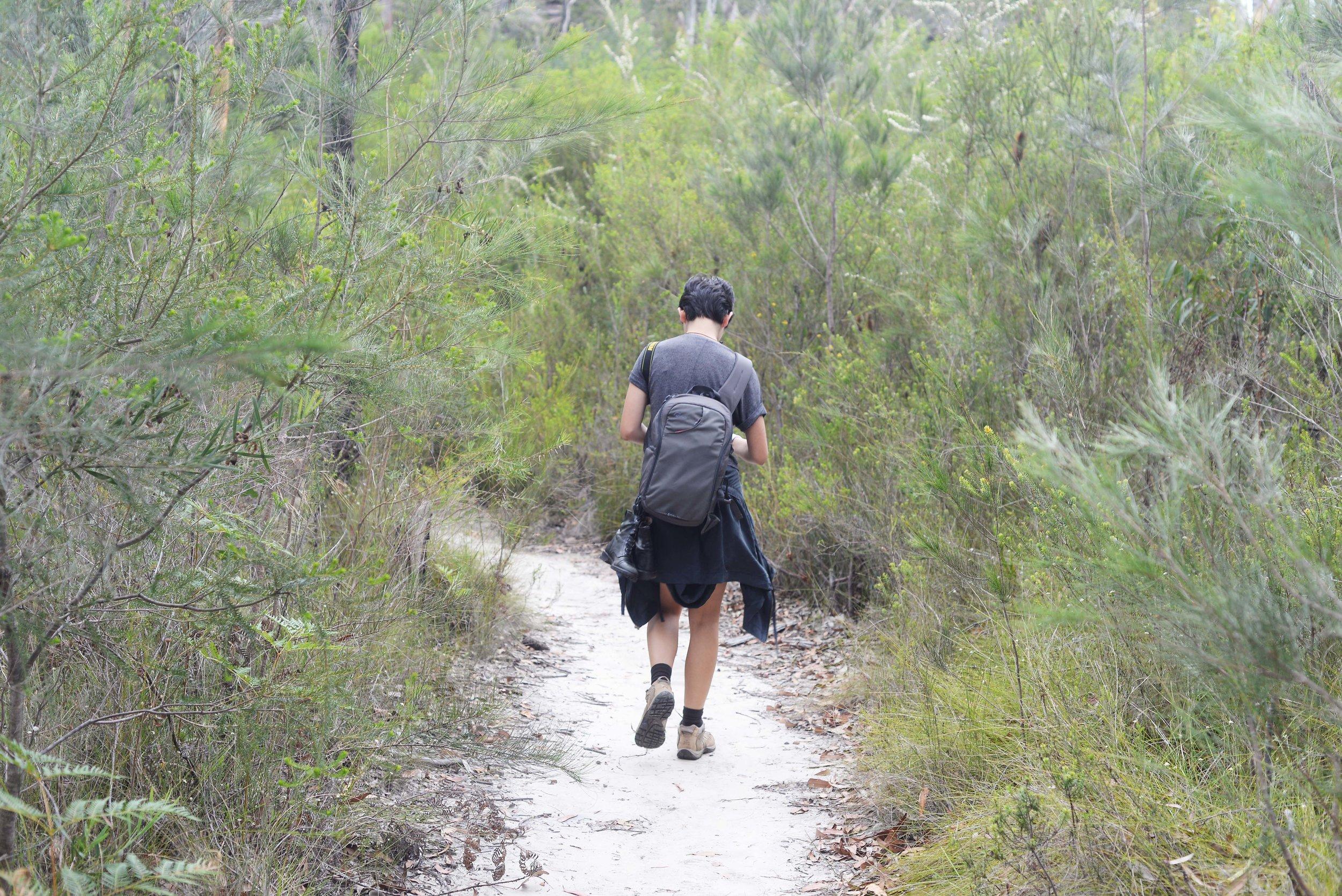 cordelia walking national park