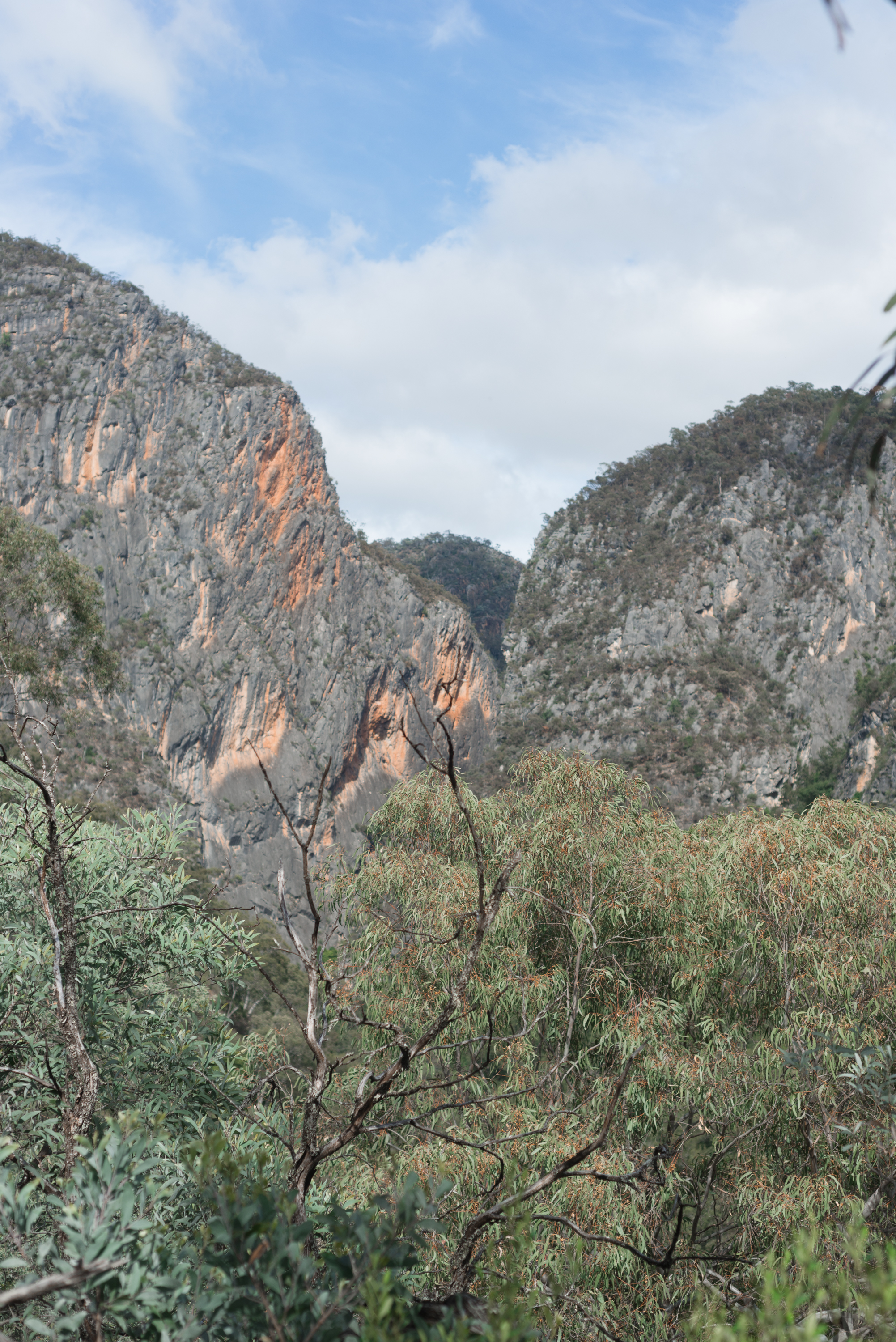 bungonia state conservation area nsw