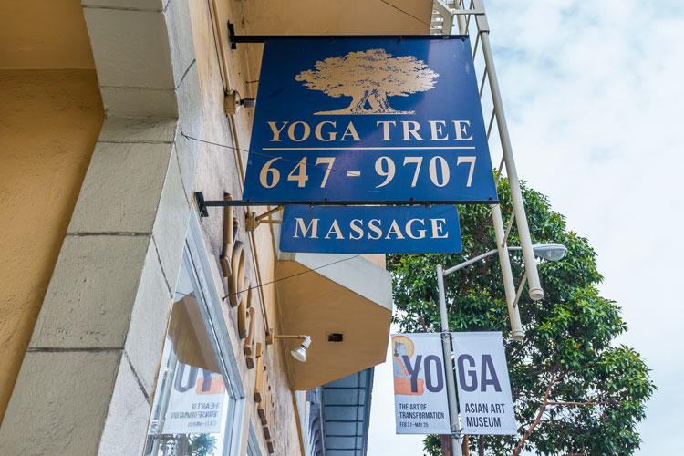 yoga-tree.jpg