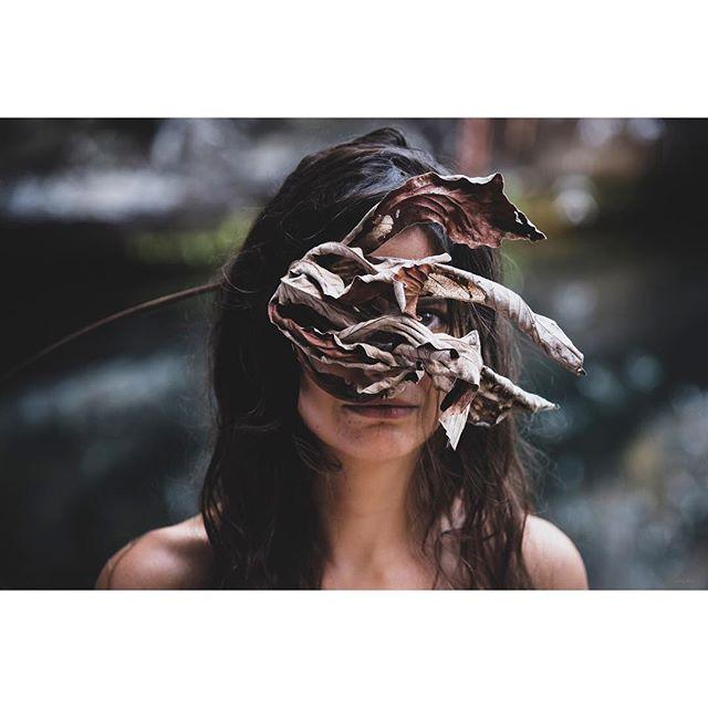 Lest we leaf through dead leaves