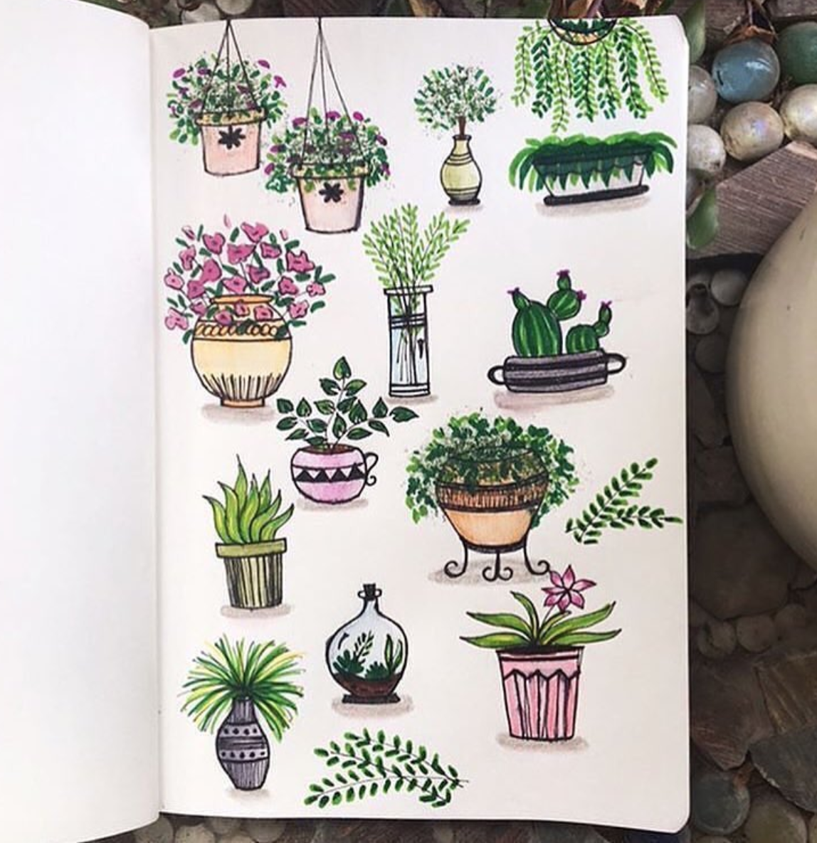 Bullet Journal Plant Doodles Sweet Planit