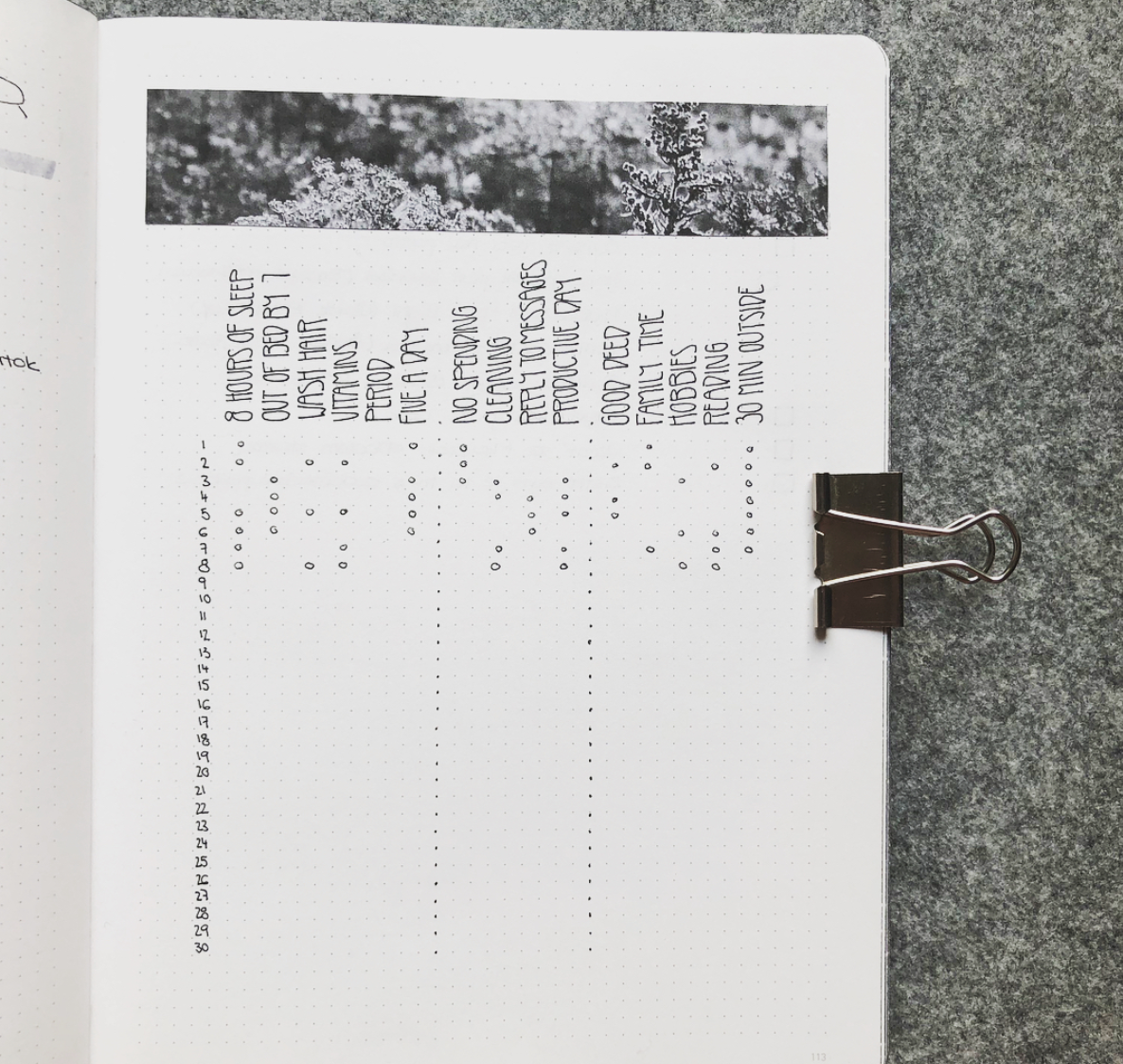 Bullet Journal Trackers in a Minimalist Layout