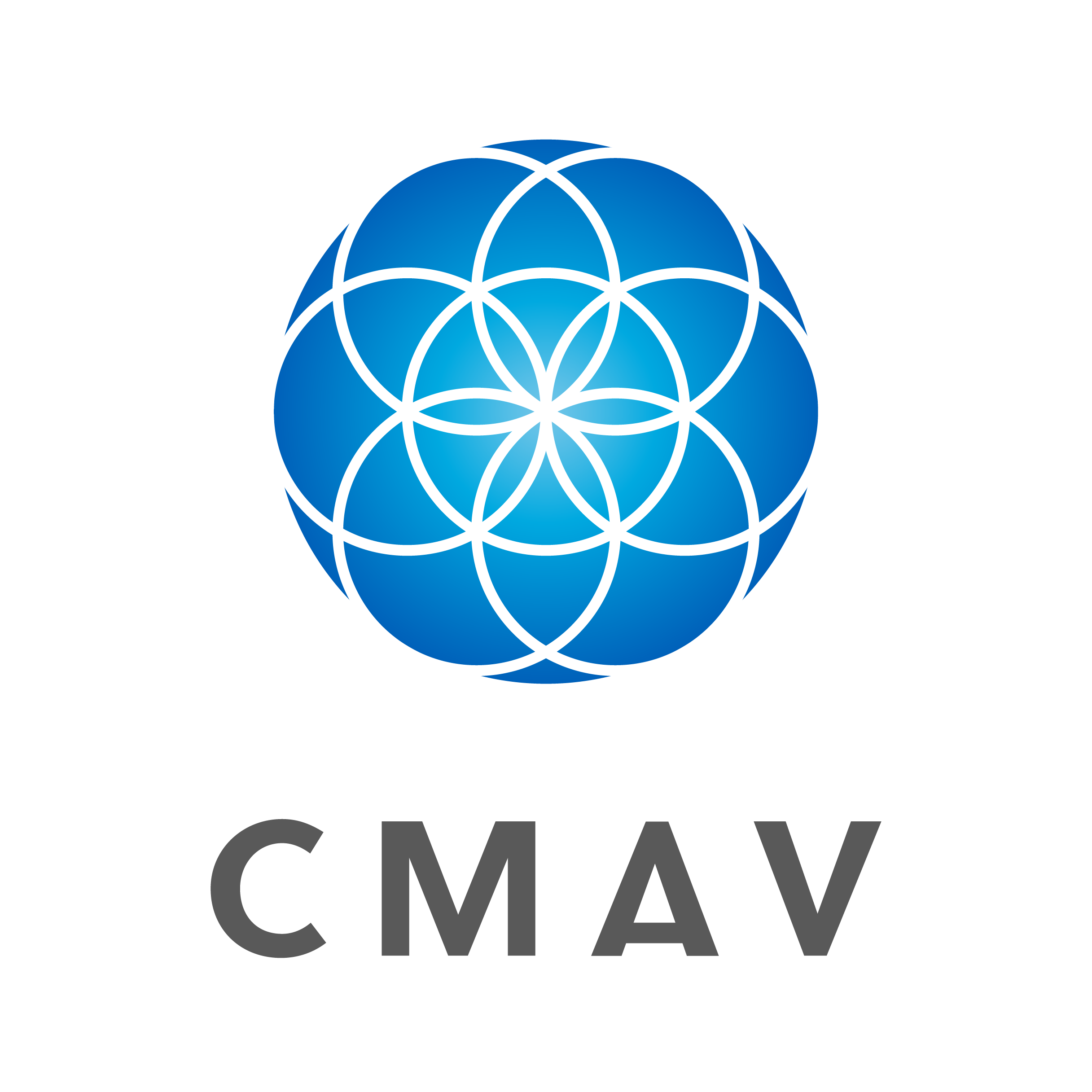 Corporate Meeting AV (CMAV)
