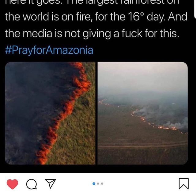 #prayforamazonia PLEASE SPREAD THE WORD! @mikeholston I heard you bro! . . .. #fitnessmotivation #insta #naturephotography #savetherainforest #photooftheday #nature #kittens #puppies #trump #spreadtheword #savetheplanet #motherhood #motherearth #instagram #model #celebrity