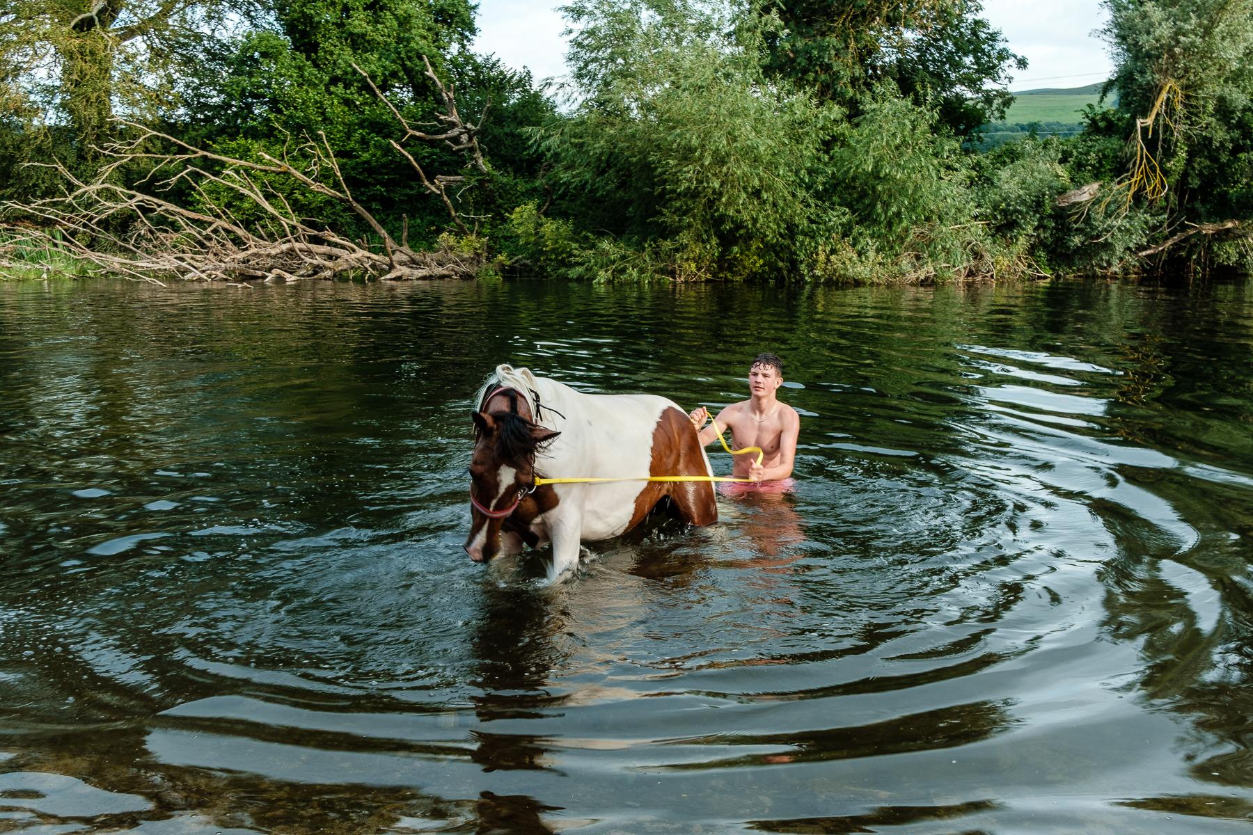 Suir Horses (2 of 7).jpg