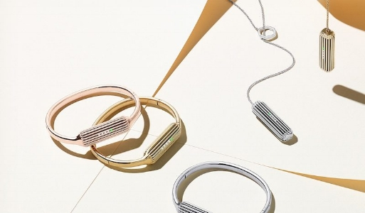 Fitbit Flex 2 Bangles and Necklace