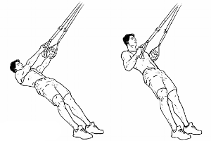 5:TRX Rows Hold At Top For 3 Seconds - 10 Reps