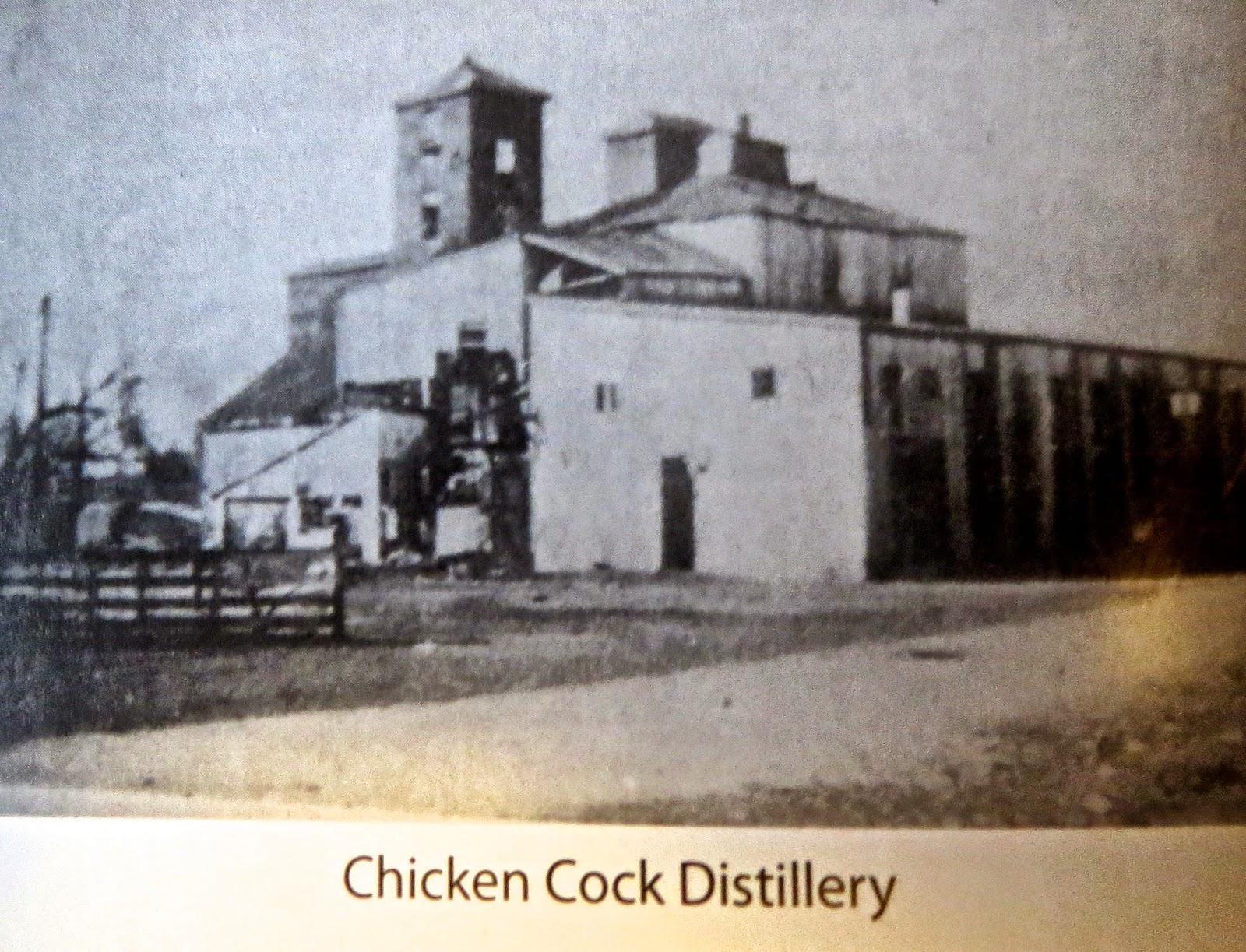 chicken cock.jpg