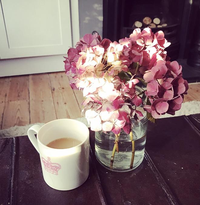 Hydrangeas from my Mum's garden brightening up my living room 🌸🌸🌸