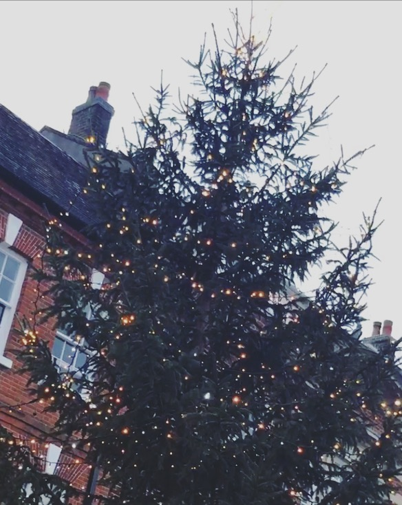 The tree is up in Winchester High Street