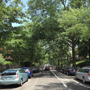 Enforcing Street Parking Rules