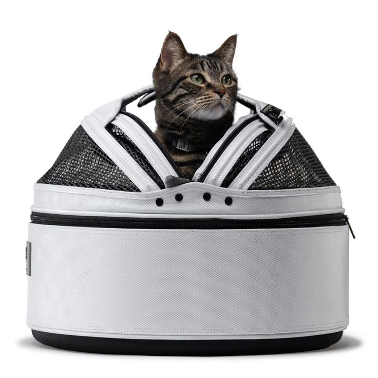 Make this carrier your kitty's regular bed at home!  Vet visits will be a breeze!