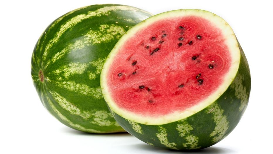 Watermelon is a great cooling treat for your dog to help beat the summer heat!