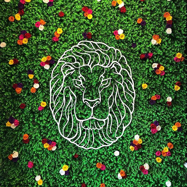 Our flagship dispensary will be opening April 1st! Come see us on opening day! 🎁 #luckylion #liftedluxury #portland @shopluckylion