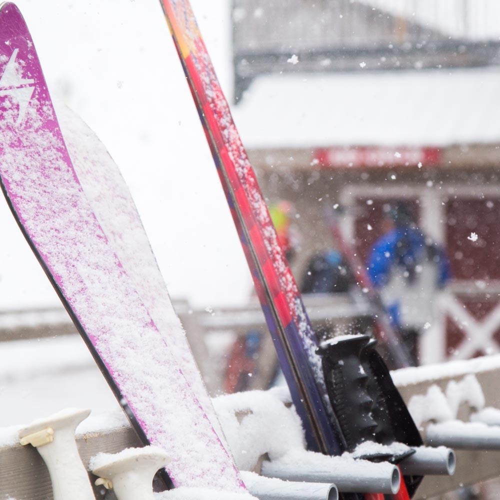 Ski Check