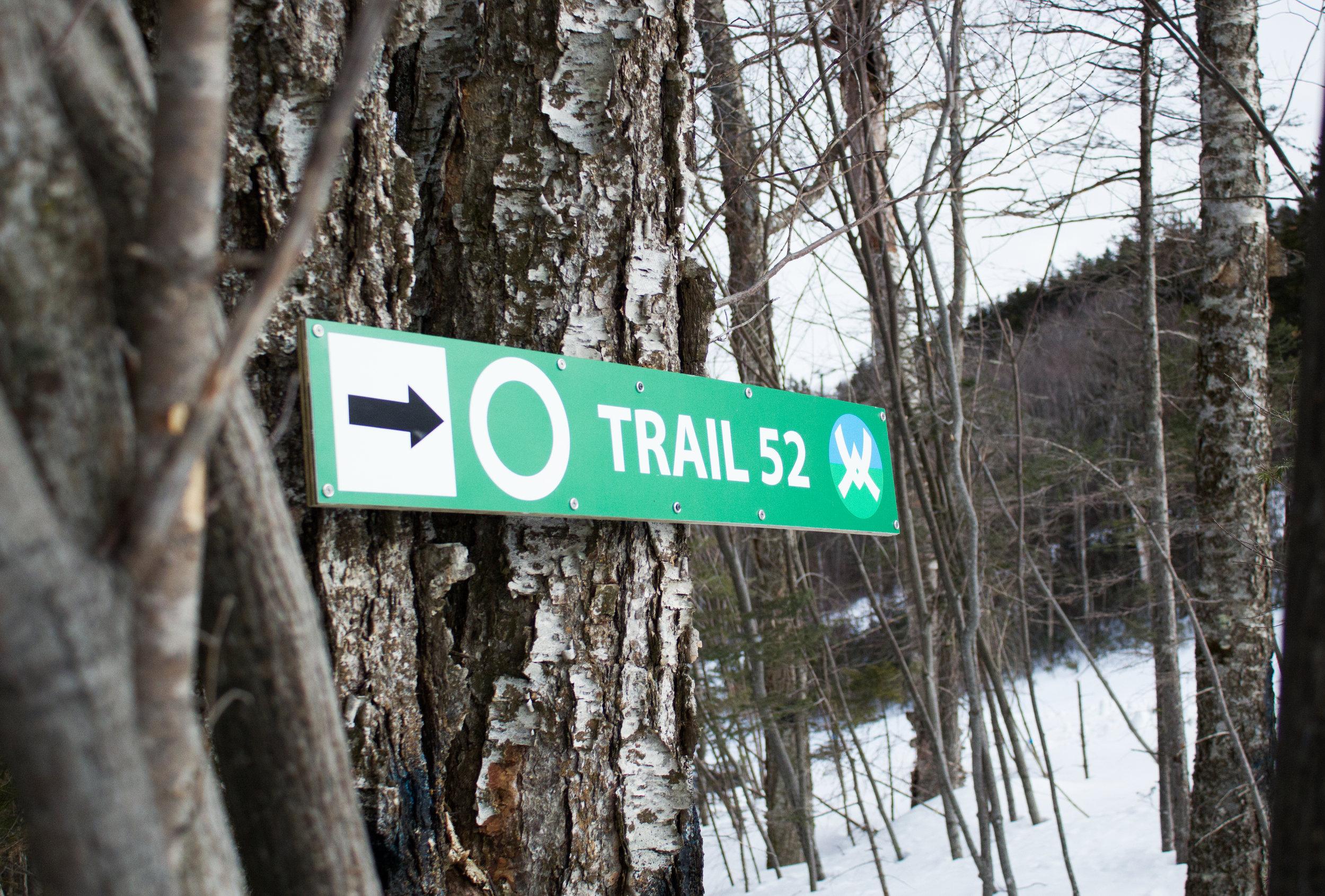 Help us name the Green Peak trails!