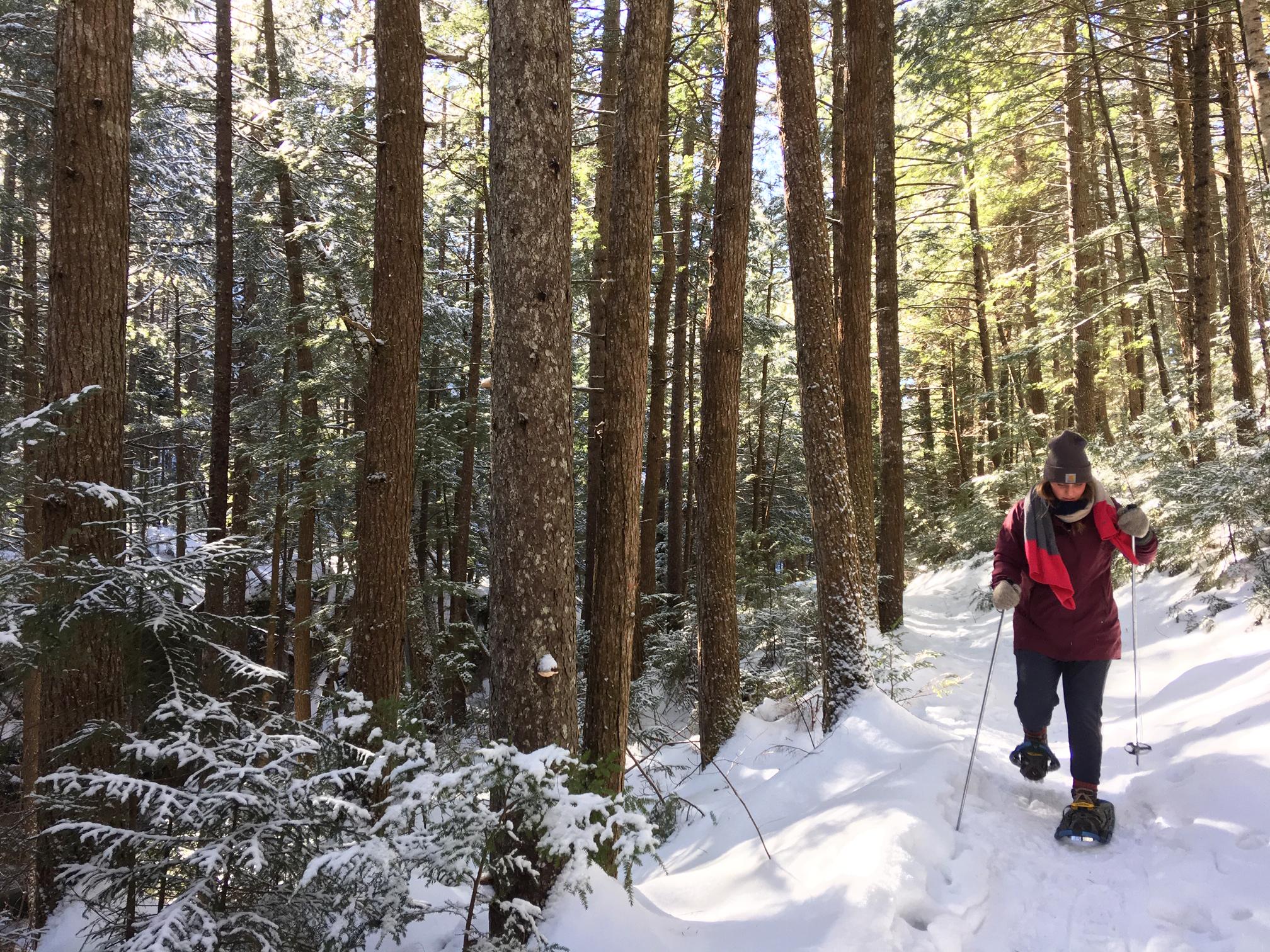 Waterville Valley Resort Snowshoeing