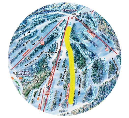 Giant Slalom Course