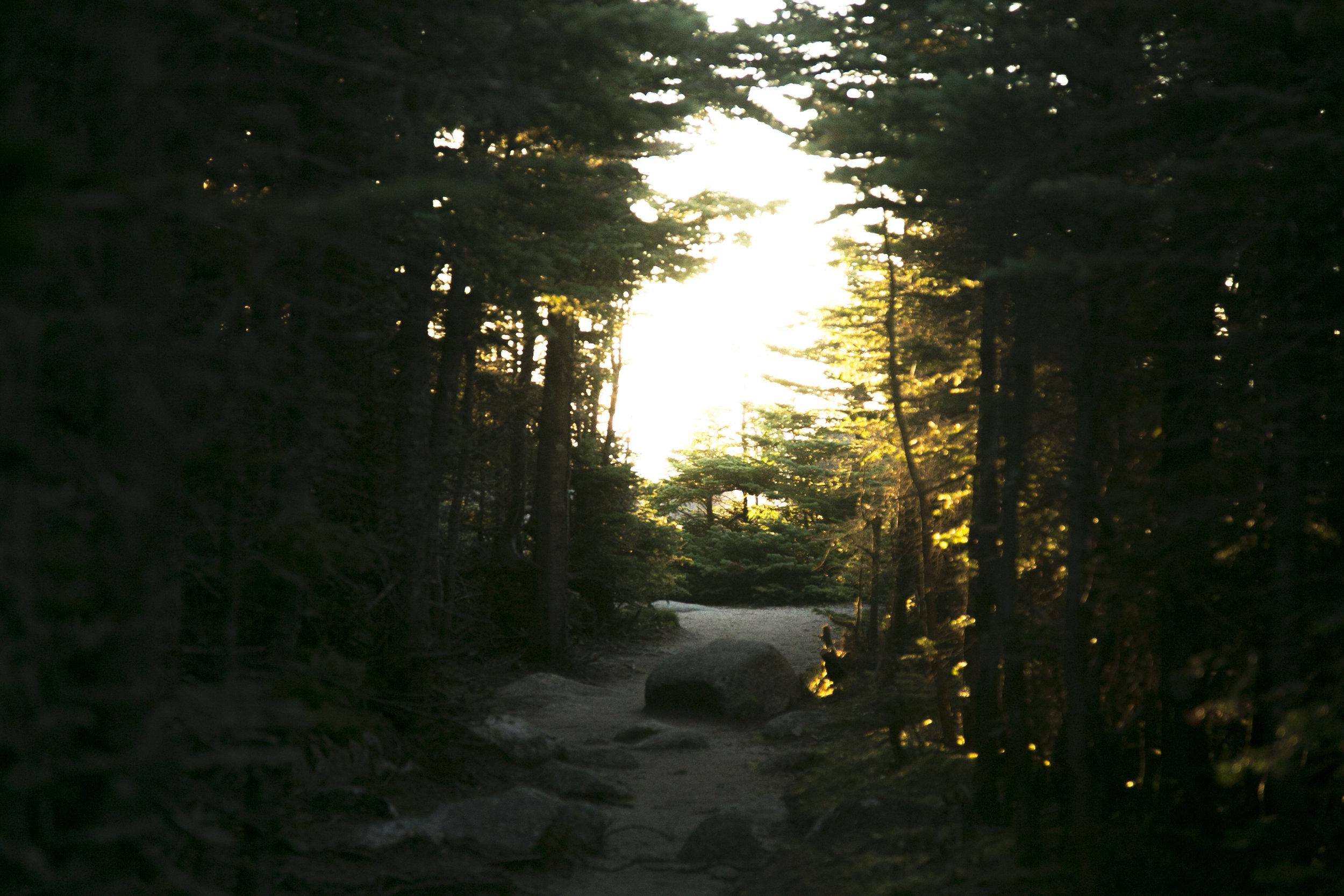 Mt. Osceola Trail