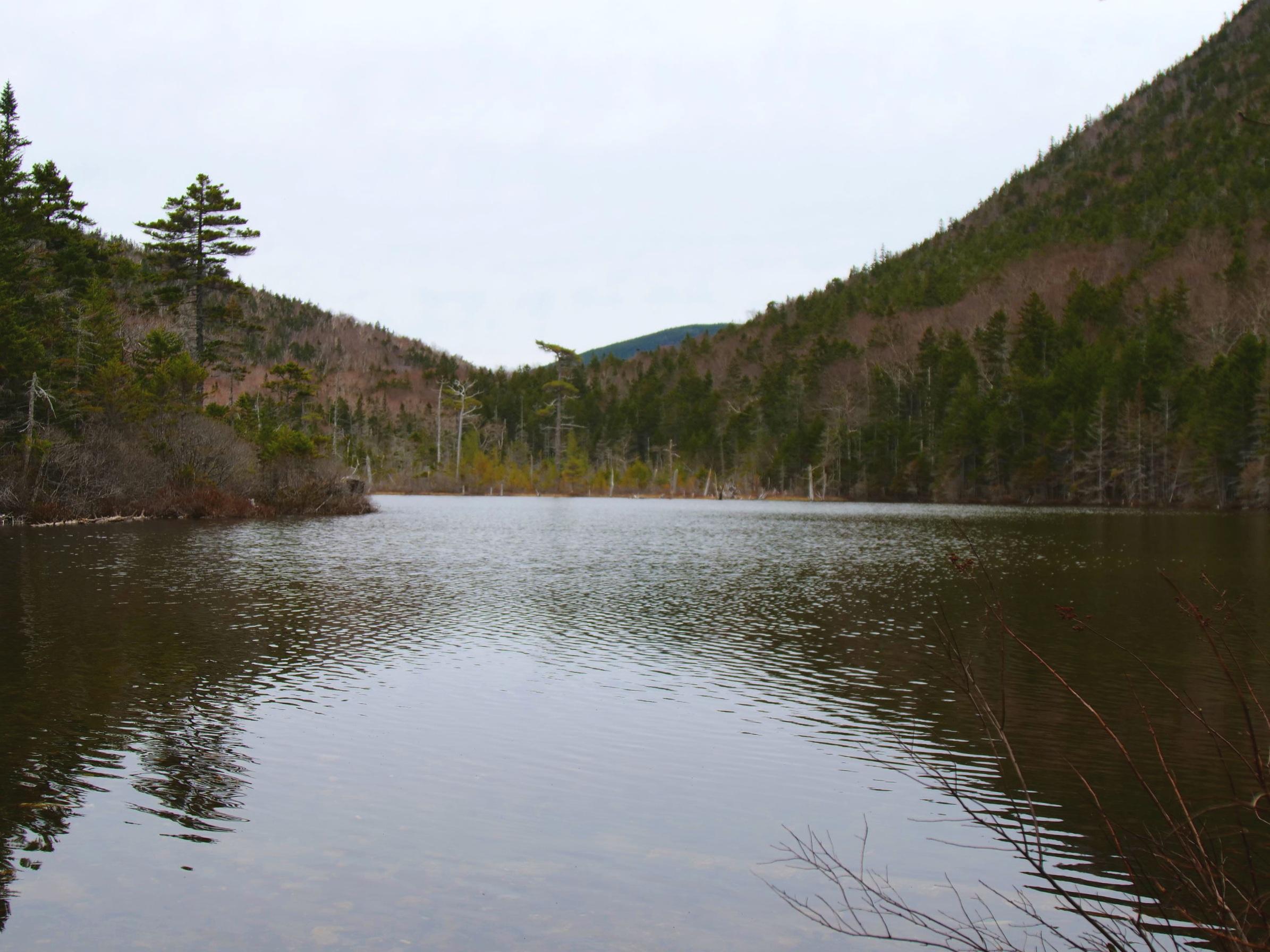 Greeley Ponds