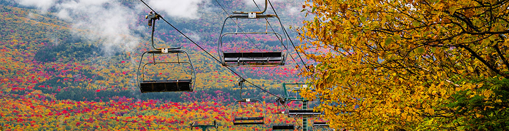 Fall color on the mountain