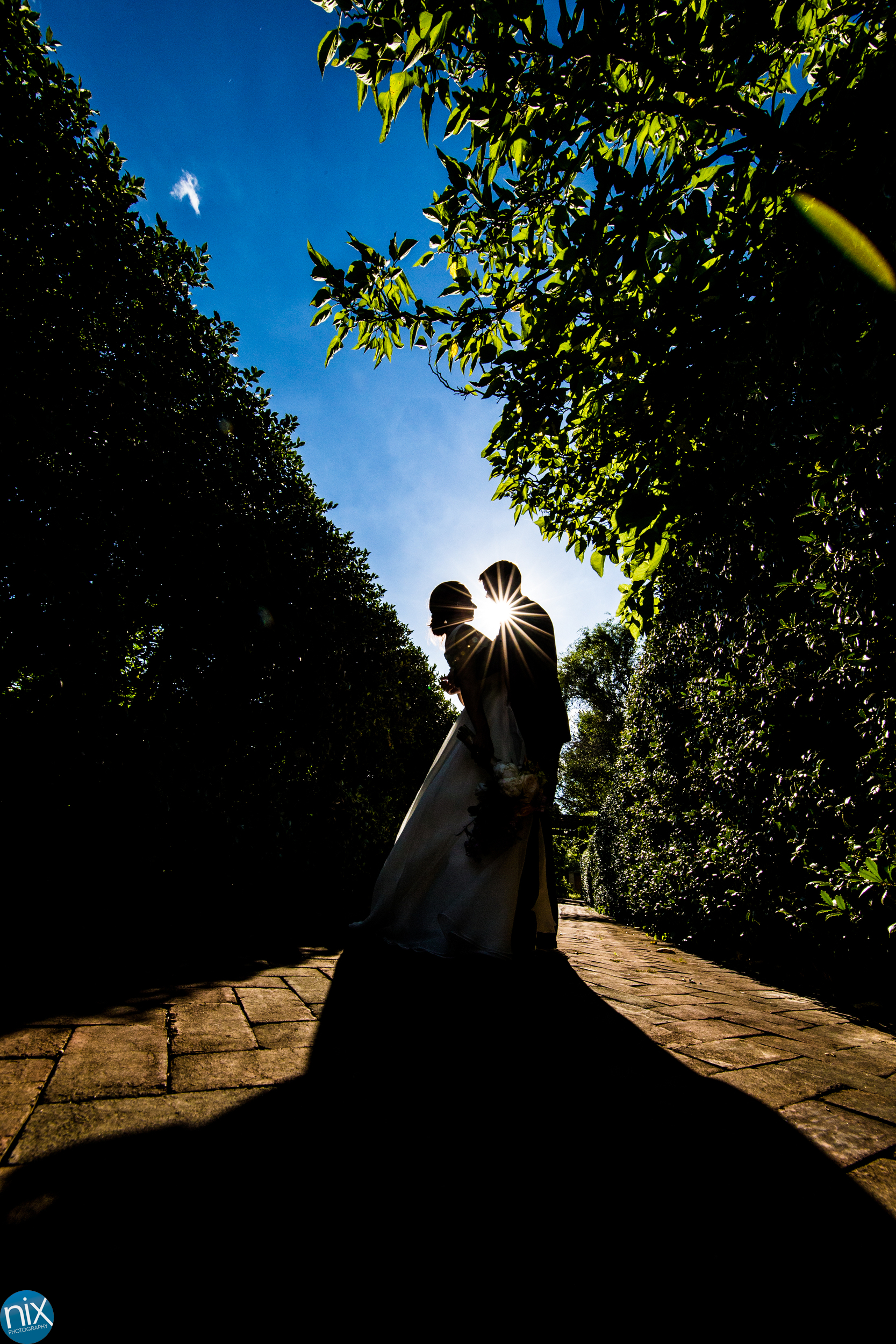 silhouette of bride and groom at Daniel Stowe Botanical Garden.jpg