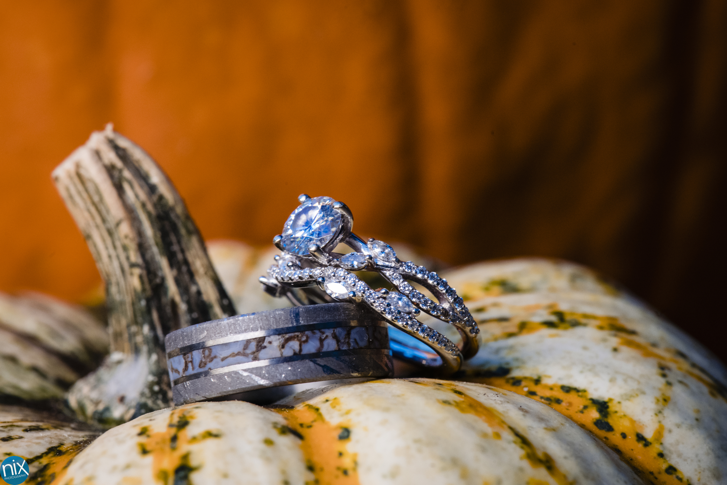 wedding rings on a pumpkin.jpg