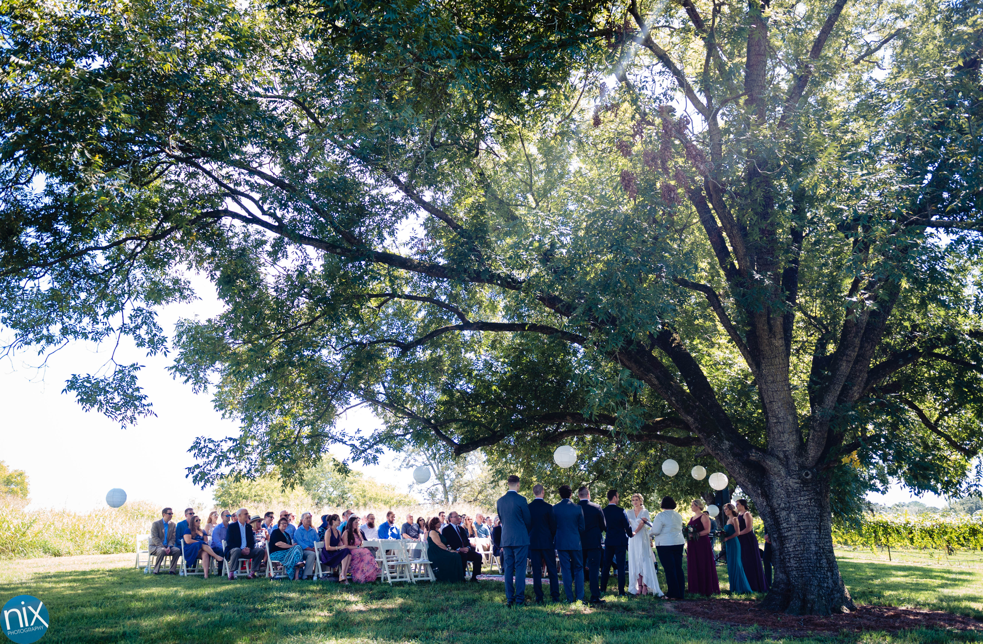 A Place in the Vineyards wedding ceremony .JPG