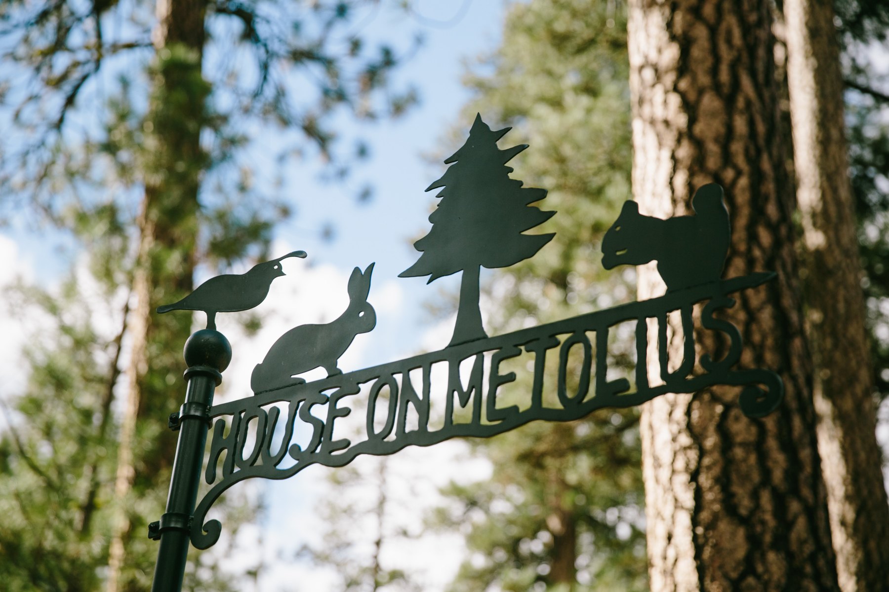 houseonmetoliuswedding-3.jpg