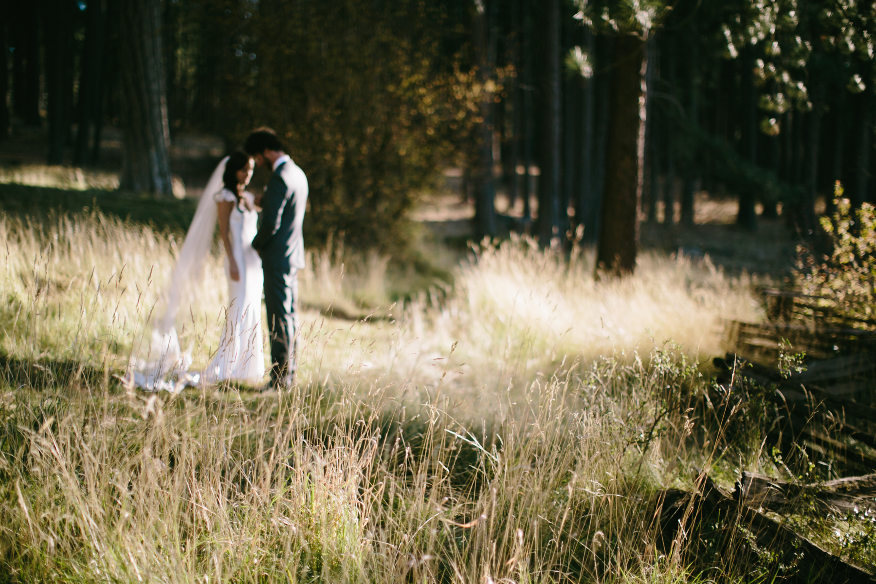 houseonmetoliuswedding-764.jpg