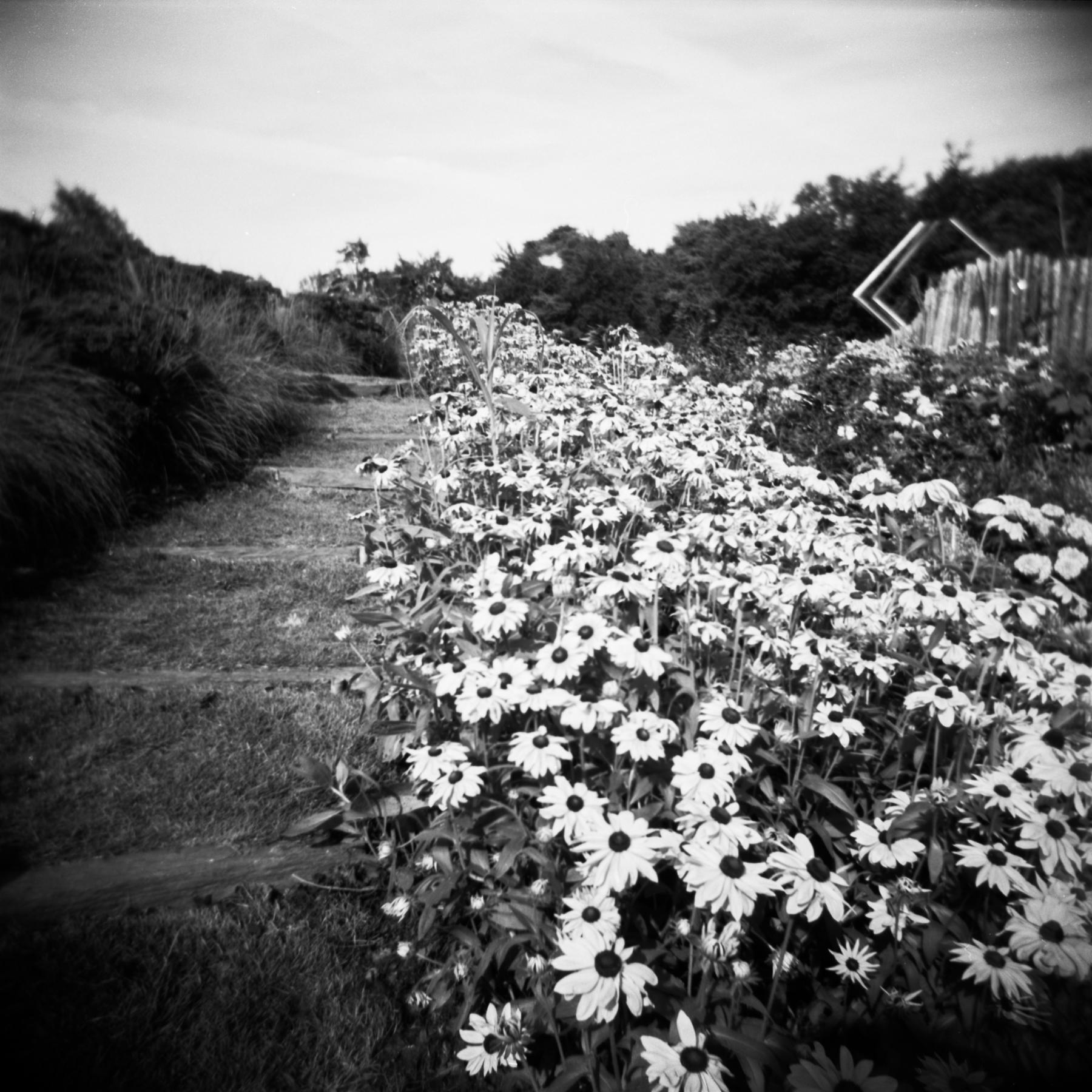 blackandwhiteparisphotography-40.jpg