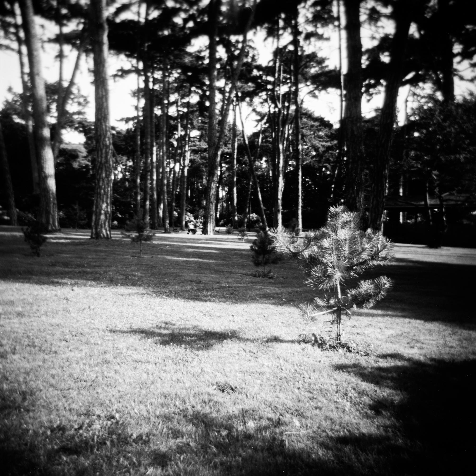 blackandwhiteparisphotography-45.jpg